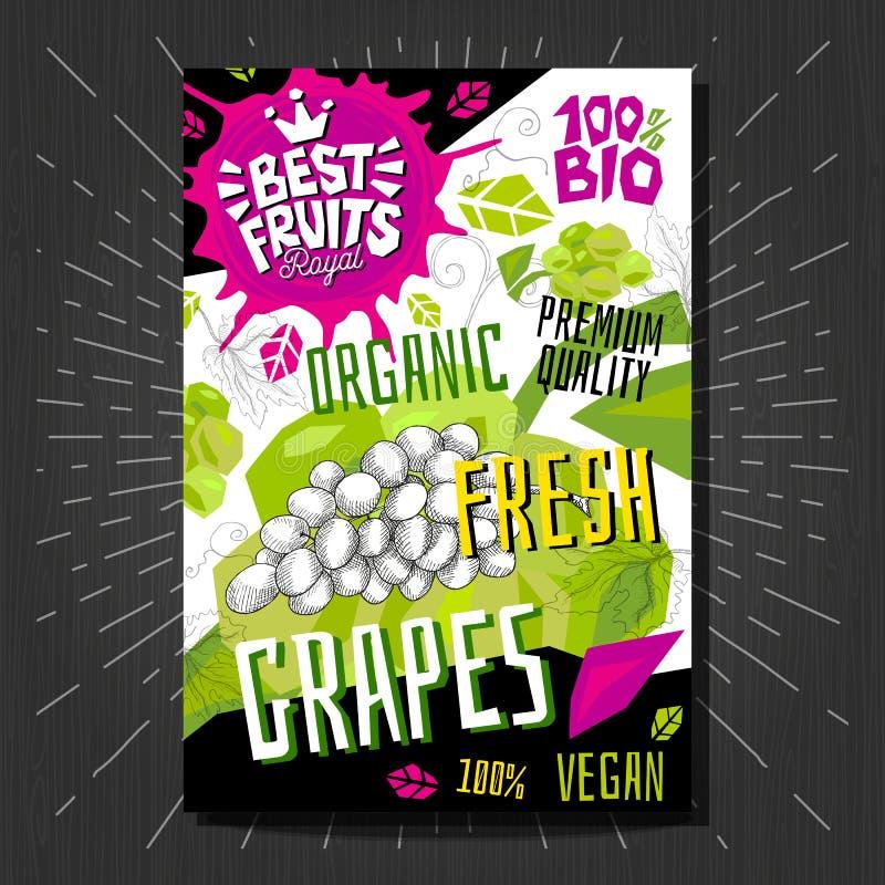 Стикеры ярлыков еды установили красочные плоды стиля эскиза, комплексное конструирование овощей специй Нарисованная рукой иллюстр бесплатная иллюстрация