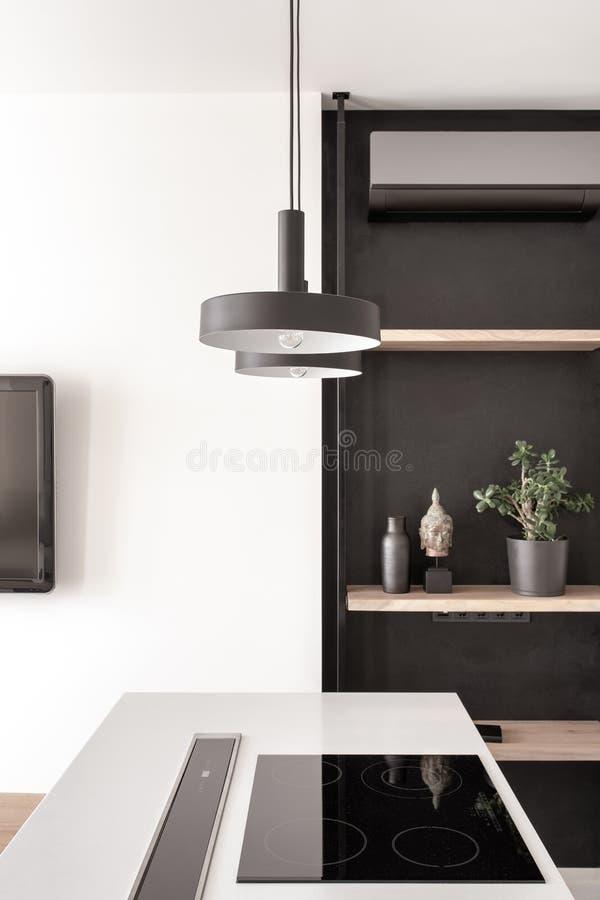 Стильная кухня в современном стиле с белой стеной стоковое изображение