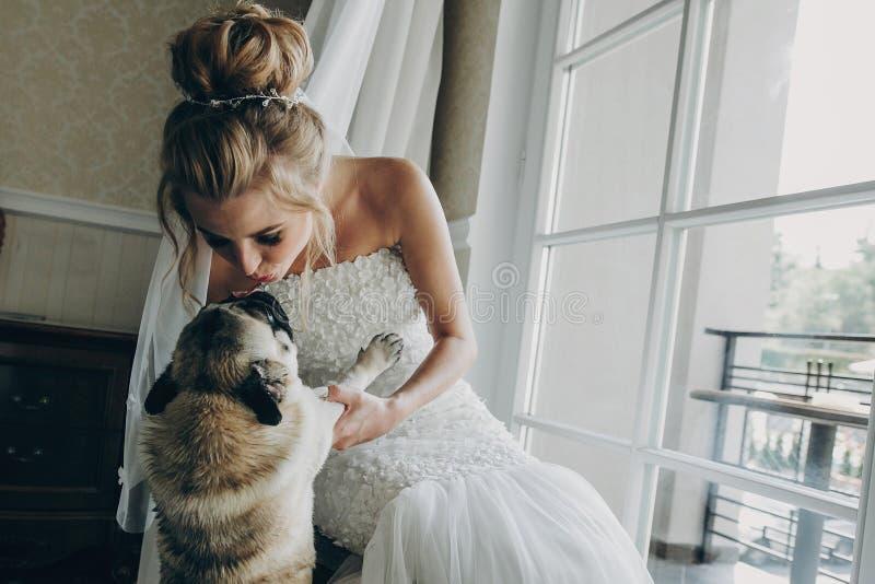 Стильная невеста целуя собаку мопса в бабочке в мягком свете около окна в гостиничном номере Шикарная невеста с ее любимцем E стоковое фото