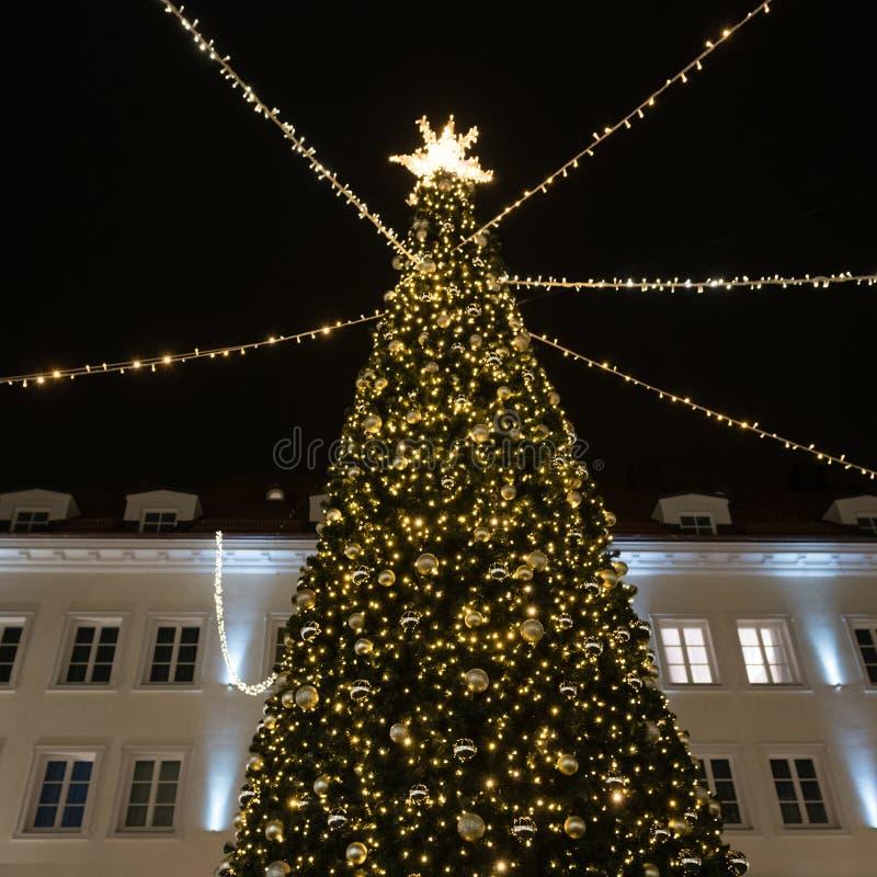 Стильная рождественская елка с золотыми огнями и освещенной звездой сверху стоковое фото rf