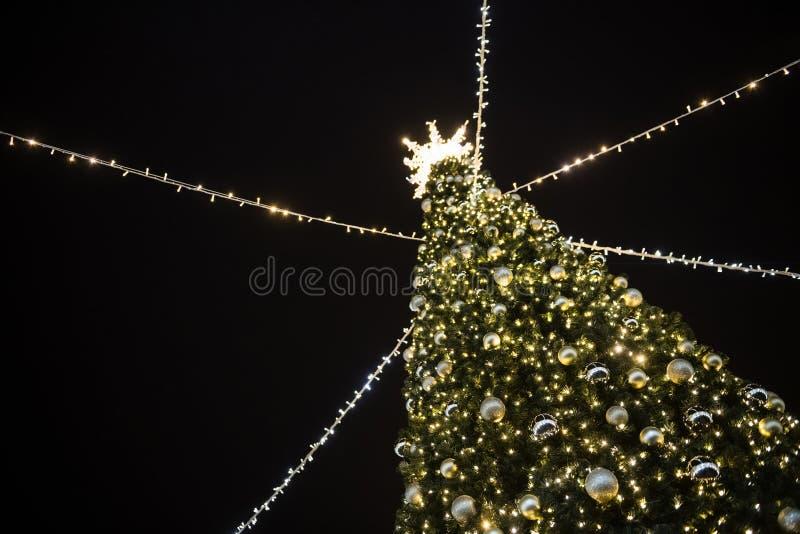 Стильная рождественская елка с золотыми огнями и освещенной звездой сверху стоковая фотография