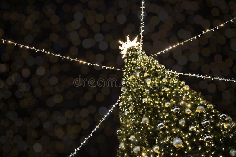 Стильная рождественская елка с золотыми огнями и освещенной звездой сверху стоковые фотографии rf