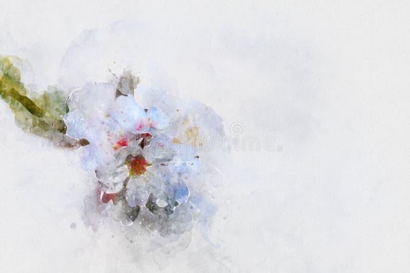 стиль акварели и абстрактное изображение винтажного белого вишневого дерева бесплатная иллюстрация