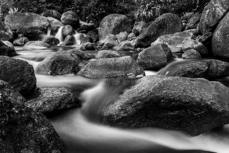 Стиль камня и дерева реки красочный, черно-белый и monochrome стоковое изображение rf