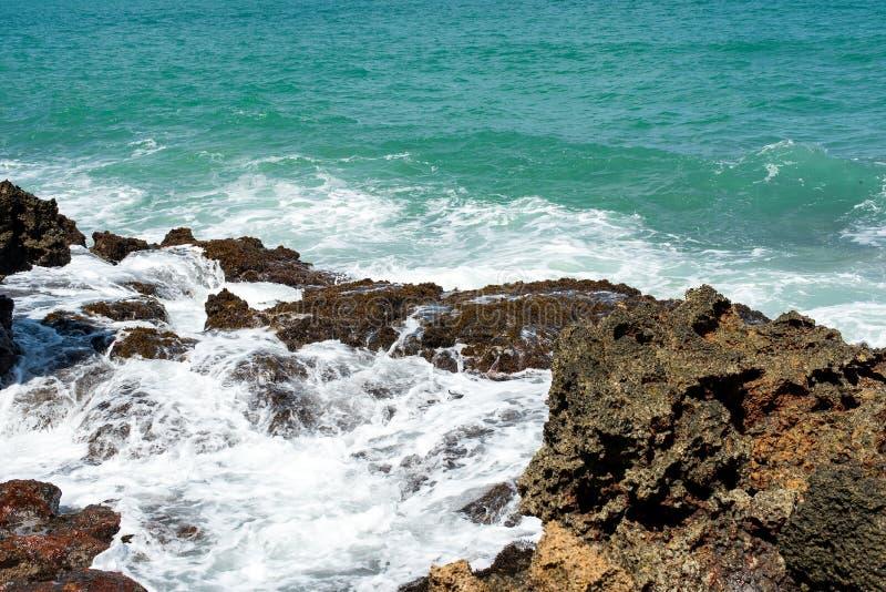 Стирка океана на утесах стоковые изображения rf