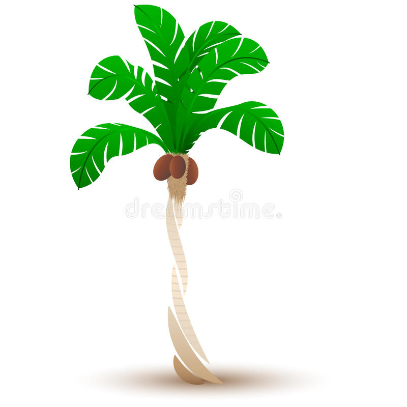Стилизованная пальма иллюстрация вектора
