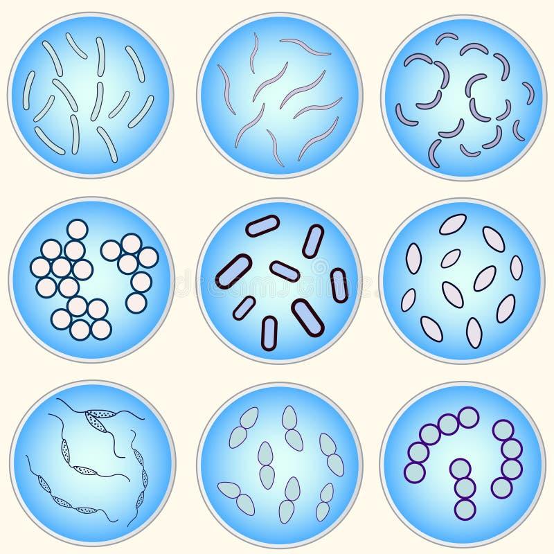 Стилизованное изображение разных видов бактерий бесплатная иллюстрация