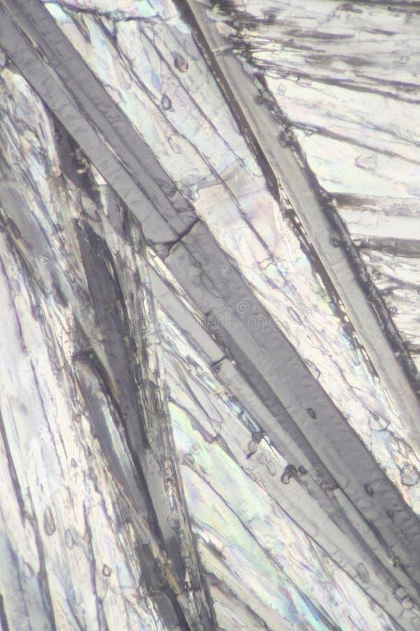 Стильбен под микроскопом стоковое фото rf