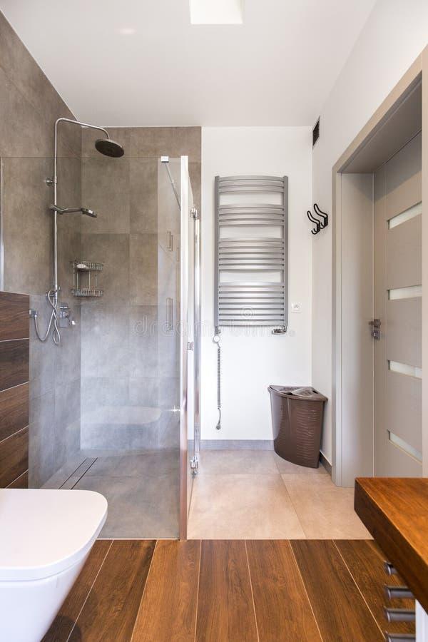 Стильная ванная комната и современный ливень стоковое изображение rf
