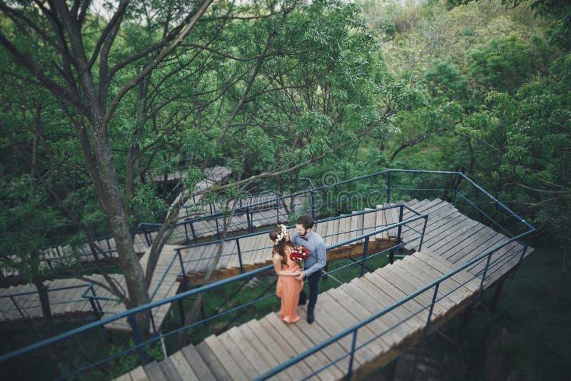 Стильные красивые счастливые пары свадьбы целуя и обнимая в ботаническом саде стоковое фото
