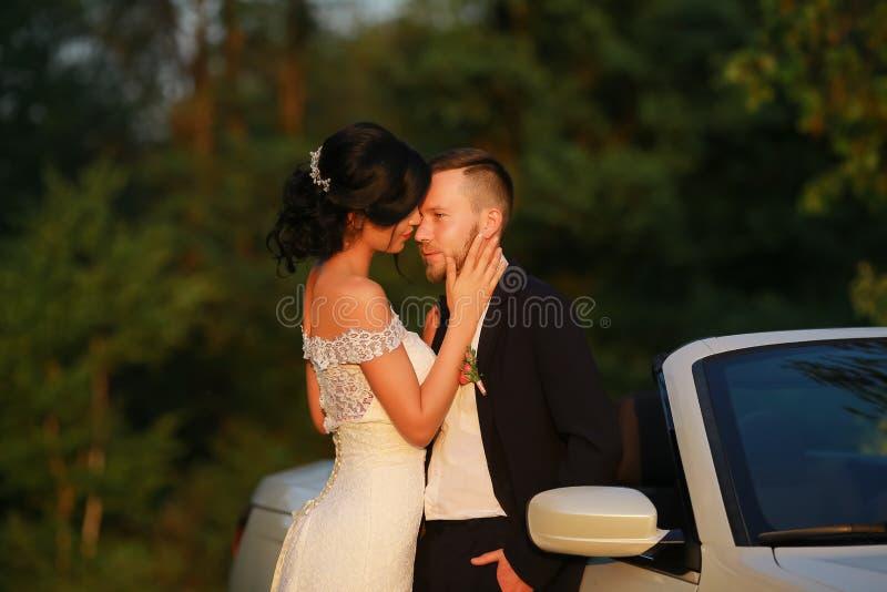 Стильный красивый счастливый жених и невеста, wedding торжества стоковая фотография rf