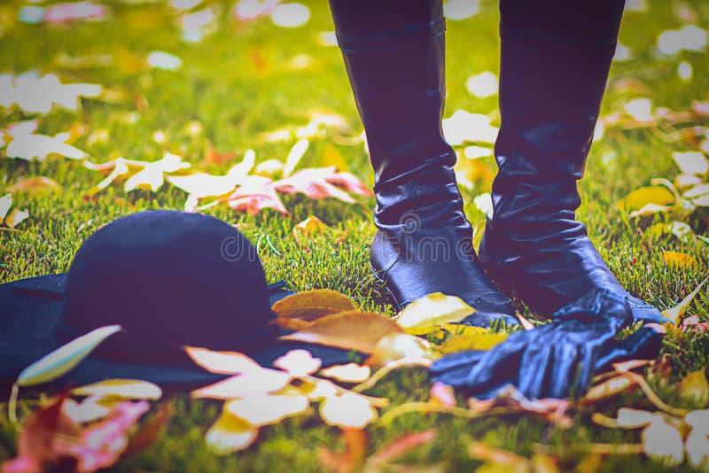 Стиль осени в парке сезон путя пущи падения осени стоковое изображение