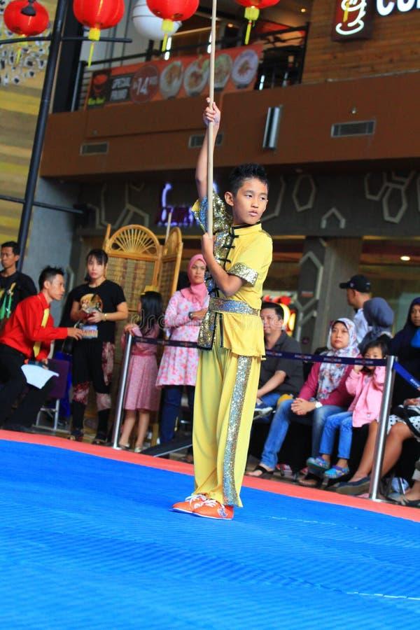 Стиль Kung Fu - Wushu Biyan Nangung стоковое фото