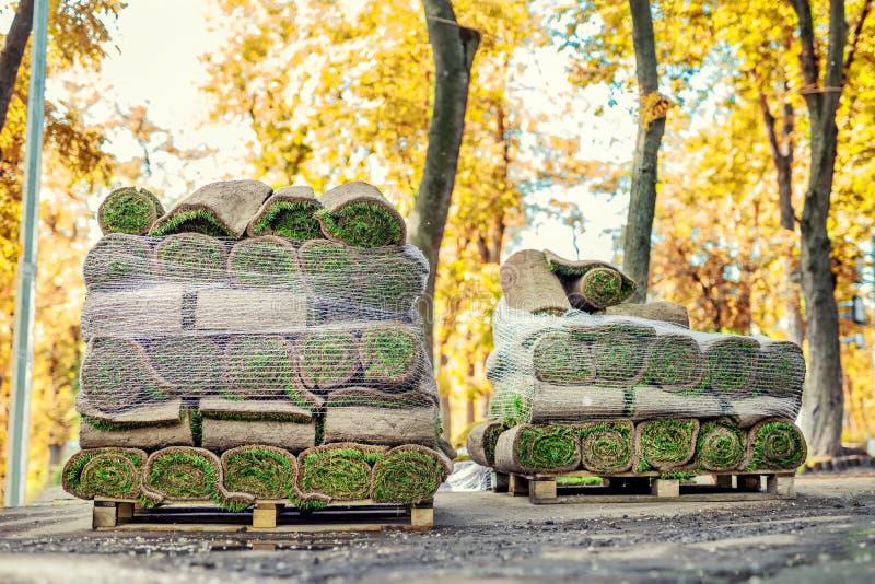 Стога зеленой свежей свернутой травы лужайки на деревянном паллете на грязи подготовленной для установки на парке или задворк гор стоковая фотография rf