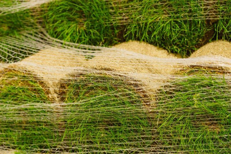 Стога кренов дерна для новой лужайки стоковая фотография rf