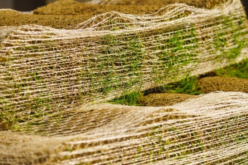 Стога кренов дерна для новой лужайки стоковое изображение