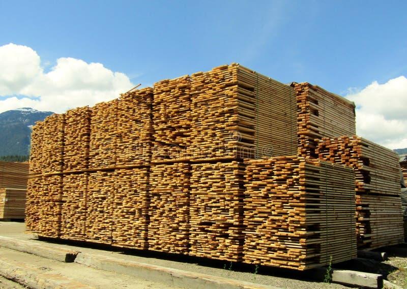 Стога пиломатериала на лесопильном заводе стоковое фото rf