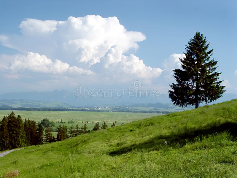 Стога сена в горах в лете стоковые изображения rf