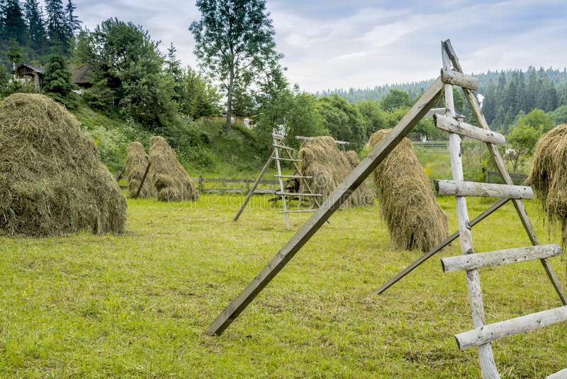 Стога сена в луге в прикарпатских горах взгляд Украины прикарпатской зоны горы ландшафта intermountain скрещивания закарпатский стоковые фотографии rf