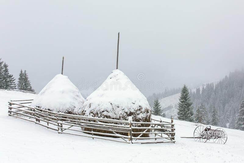 Стога сена зимы в горах Carphatian стоковые фото