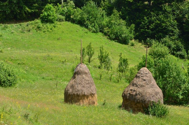 2 стога сена на зеленом луге стоковое фото rf