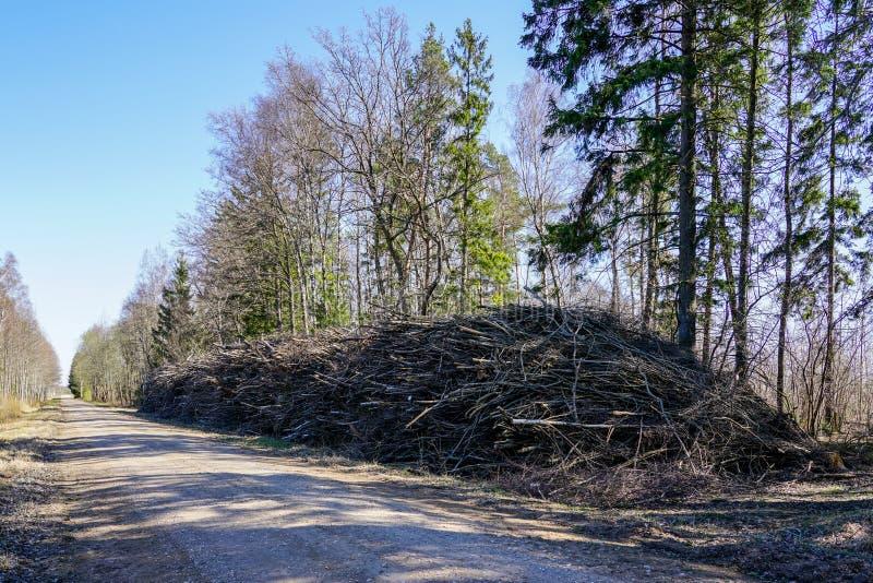 Стог ветвей дерева на обочине перед подготовкой в деревянных щепках для bioenegy стоковые изображения