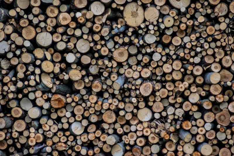 Стог древесины Текстура журналов стоковое изображение