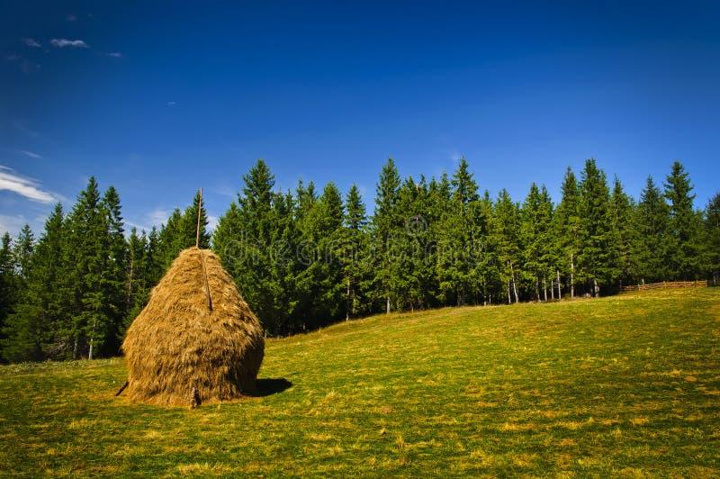 стог ландшафта сена стоковое изображение