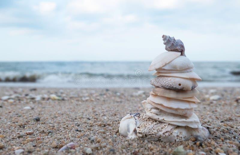 Стог раковины моря на пляже с морем и голубом небе на дзэне концепции предпосылки, спа Пустое пространство для текста и изображен стоковые фотографии rf