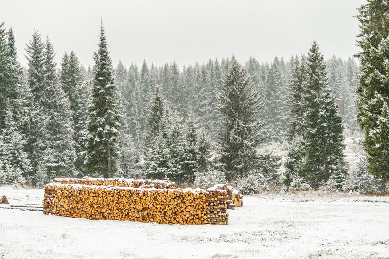 Стог древесины отрезанный с снегом стоковое фото rf