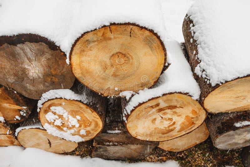 Стог древесины отрезанный с снегом стоковые фотографии rf