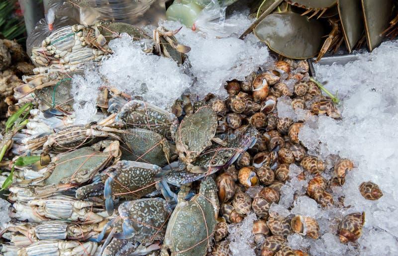 стог свежих голубых плавая крабов в рынке морепродуктов Предпосылка морепродуктов свежая Весь омар с морепродуктами, крабом, миди стоковое изображение