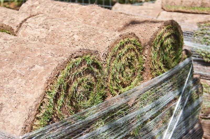 Стог свернутого дерна травы для садовничать стоковое фото rf