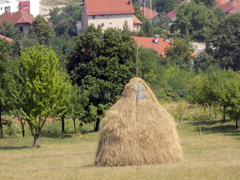 Стог сена в деревне стоковое фото
