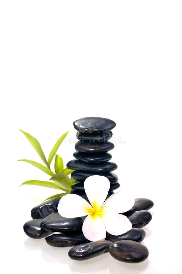 Стог черного камня Дзэн с белым цветком стоковое изображение rf