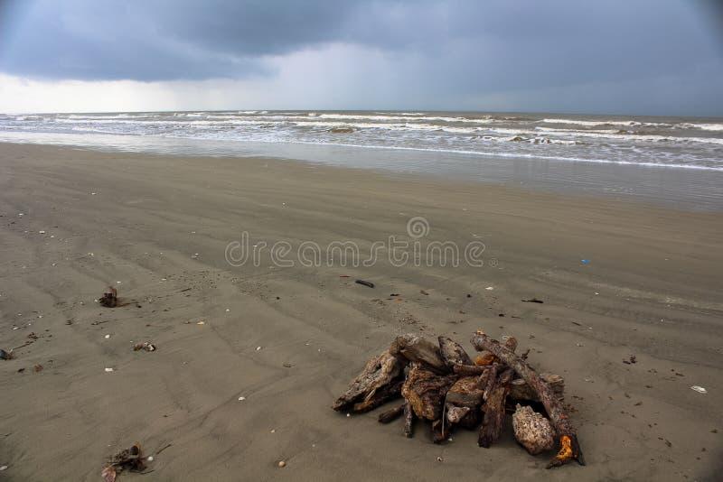 Стог Driftwood стоковое фото