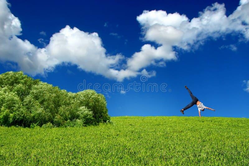 Download стойка рукоятки предназначенная для подростков Стоковое Фото - изображение насчитывающей bush, bluets: 6864264
