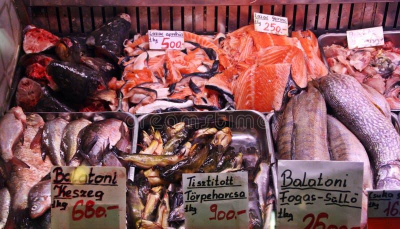 Стойл пресноводных рыб в рынке Будапешта, Венгрии стоковые изображения