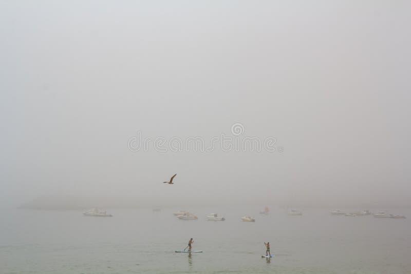 Стойте вверх прибой затвора в тумане стоковые изображения rf