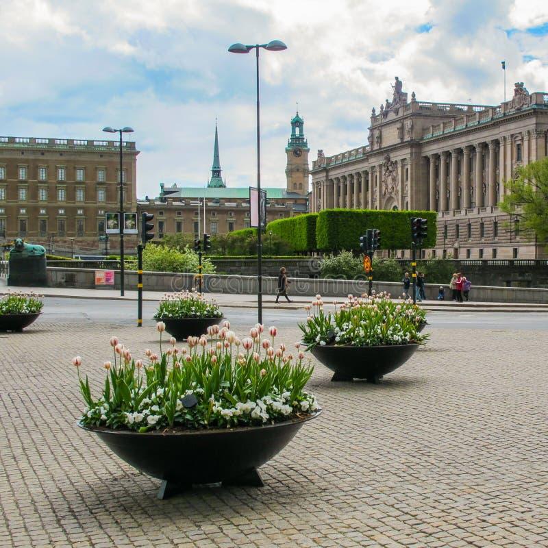 Стокгольм Швеция - 16-ое мая 2011: Цветки весны в центре Стокгольма на предпосылке красивого вида  стоковое изображение