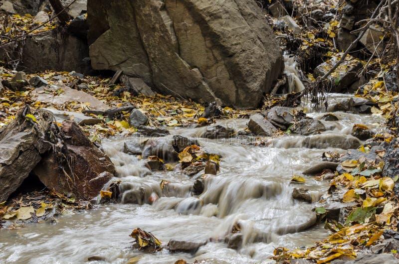 Сток дождевой воды стоковое изображение rf