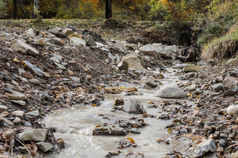 Сток дождевой воды стоковое фото rf