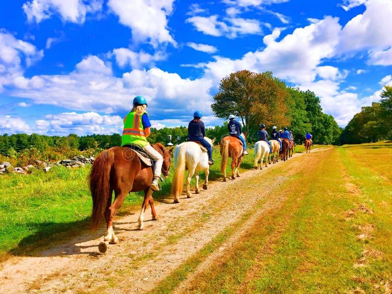 Столбец верховых лошадей людей стоковое фото