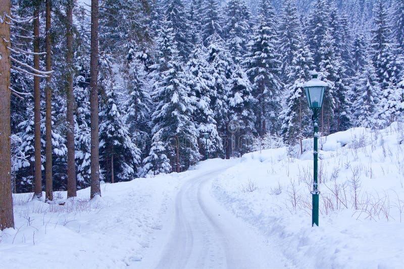 Столб лампы в зиме стоковое фото rf