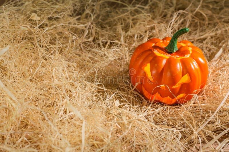сторновка тыквы halloween стоковые изображения rf