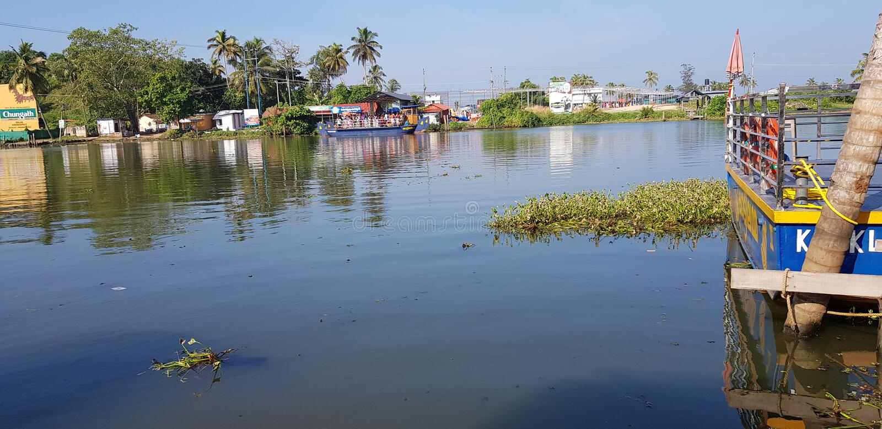 Сторона озера на kollam Керале стоковые фотографии rf