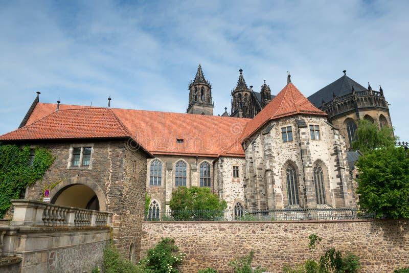 Сторона реки собора Магдебурга стоковые фото