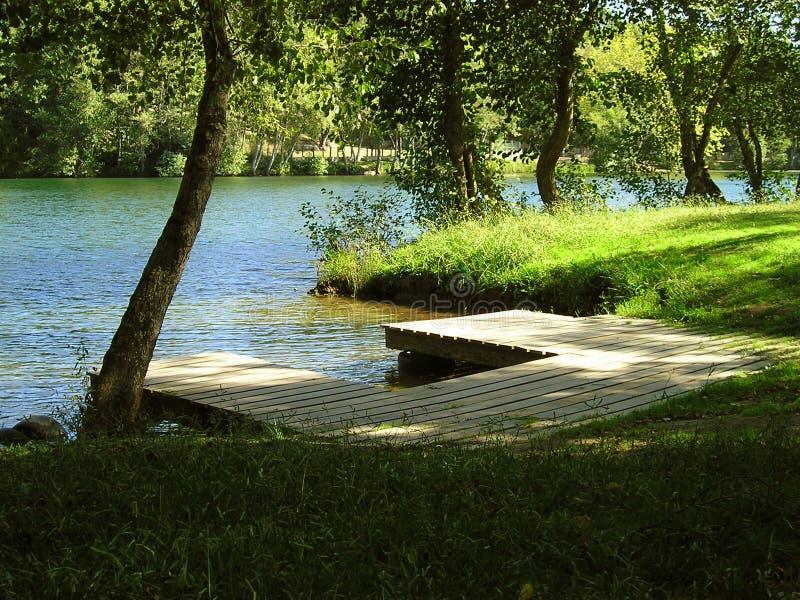 сторона реки стоковые фото