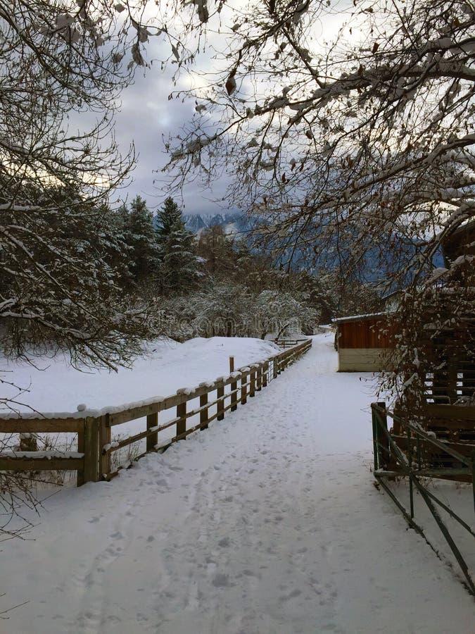 Сторона страны в зимнем времени стоковое изображение
