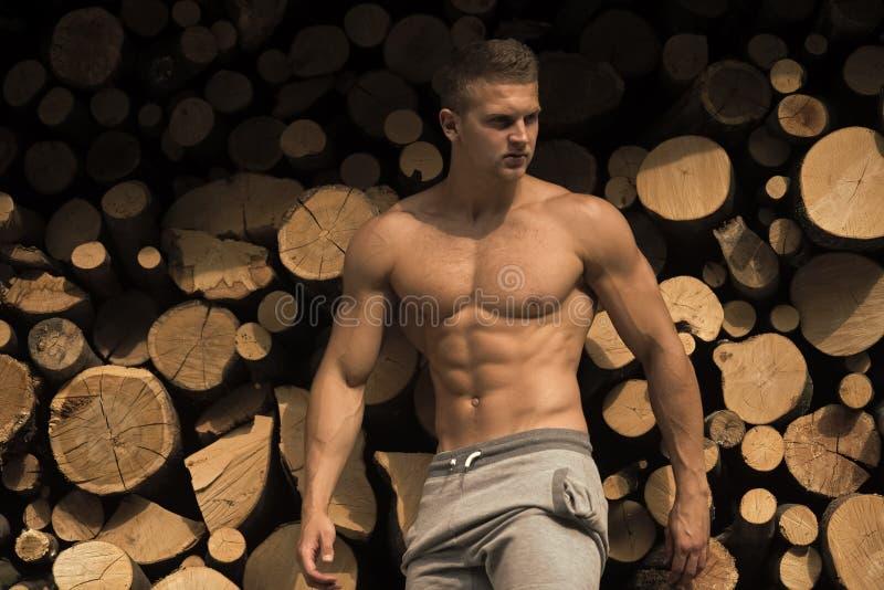Сторона человека красивая Спортсмен или культурист на предпосылке швырка стоковые фотографии rf